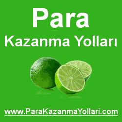 [<?php yaz('Para Kazanma Yollar�',$ch);?>]